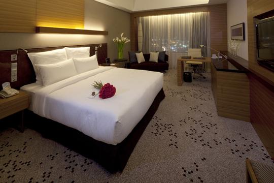 ラディソン・ブル・ホテル&リゾーツ プレミアルーム(イメージ)